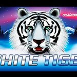 White Tiger Aristocrat Slots Game Explained in Detail
